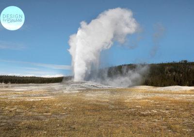 Yellowstone Photography
